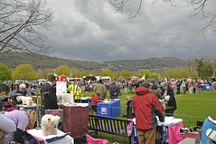 Storm Clouds Gathering (Dreamsmitten) Tags: trees green dogs grass clouds grooming tables worcestershire dogshow spectators stormclouds malvernhills showground showring