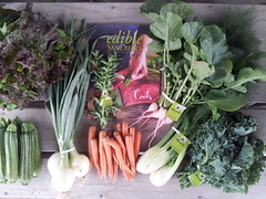 Suzie's CSA Box, Week of April 25 - May 1