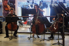 Southbank Sinfonia (2016) 07 - String Orchestra (KM's Live Music shots) Tags: cello doublebass southbankcentre stringorchestra southbanksinfonia westernclassicalmusic fridaytonic