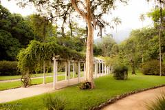 2016, brazil, rio, botanical gardens stola (q.phia) Tags: brazil sun beach fountain gardens umbrella botanical hotel sailing orchids buzios resort lilypad favela