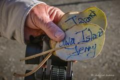 Ulva Island Ferry Tickets- Muttonbird Scrub Leaf (flyingkiwigirl) Tags: blue bird ferry island penguin golden bay office tour post native stewart kiwi ulva