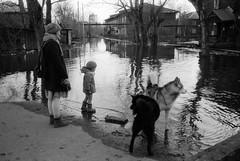 Scan-160502-0004 (Oleg Green (lost)) Tags: people bw film 35mm river flood russia voigtlander rangefinder rodinal province reservation fomapan canon7 vyatka 2535