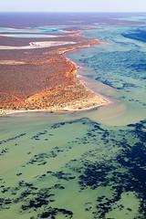 Shark Bay - 5288