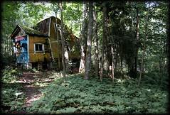 Kruunuvuori (Animathika) Tags: abandoned suomi finland sony ciudad ghosttown finlandia ghostvillage kruunuvuori abandonedtown sonynex