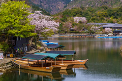 Tour boats on Katsura River near Arashiyama (bill.finlay) Tags: japan arashiyama tourboats katsurariver