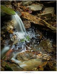 Frozen movement (nandOOnline) Tags: water river frozen waterfall moving movement ardennen belgi falling luik fallingwater hogevenen rivier dropplets eupen getzbach hertogenwald hautefagnes belgi