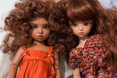 Nehana-and-Annabel (Gift Colony) Tags: light brown real skin special irene bjd efreet lightbrown iplehouse