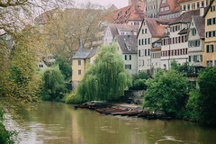 Surrounded by Green (freyavev) Tags: trees houses green water river germany boats deutschland outdoor rainy neckar tbingen badenwrttemberg vsco