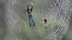 113/366: caught in the web (Andrea  Alonso) Tags: red selfportrait project myself spider miniature web small 365 araa autorretrato minime proyecto miniyo 366