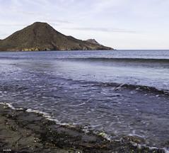 Algas en Cabo de Gata (jlpezrecio) Tags: beach nature happy freedom playa almera cabodegata