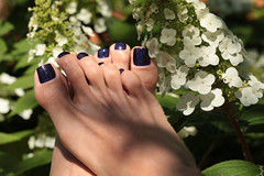 Grape Alicious (IPMT) Tags: hot sexy love feet fetish foot toes purple painted violet polish barefoot pedicure nailpolish uva grape toenails shimmering violeta shimmer toenail holographic holografico holo morado pedi descalza alicious ilnp