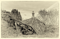 Tumbledown cottage, Lingwood, Norfolk. (lizzieisdizzy) Tags: overgrown cottage ruin tiles slate tumbledown dilapidation beams