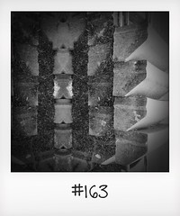 """#DailyPolaroid of 9-3-16 #163 • <a style=""""font-size:0.8em;"""" href=""""http://www.flickr.com/photos/47939785@N05/26596639641/"""" target=""""_blank"""">View on Flickr</a>"""