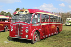 One of a pair. (steve vallance coach and bus) Tags: detling eastkent ffn446 beadleleyland southeastbusfestival