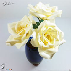 Soft Pale Yellow Coffee Filter Rose Arrangement in Cobalt Blue Vase by EAJoseph Design Studio@JuxtaRosed 2016 All rights reserved (juxtarosed) Tags: blue roses woman usa holiday flower green nature coffee floral beautiful beauty look leaves rose yellow gardens female garden easter real moss stem women soft pretty hand looking natural gardening handmade michigan navy deep vessel drop pale her deer made filter gift stamen present bunch bloom looks vase handcrafted bouquet collectible etsy thorns tear teardrop centerpiece thorn society hers arrangement collectable realism cobalt biodegradable realistic thorny floribunda sepal crafted lifelike biodegrade biodigradable chartertownshipofclinton juxtarosed biodigrade