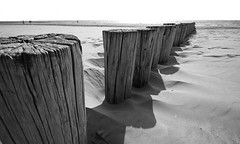 Erosion (M a u r i c e) Tags: wood people blackandwhite bw sunlight beach nature netherlands monochrome sand shadows northsea ameland efs1022mm polehead