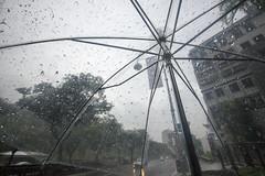 Typical Tropical (oruwu) Tags: street rain umbrella singapore clear