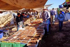 DSCF4459.jpg (ptpintoa@gmail.com) Tags: morroco marrakech marruecos marrocos