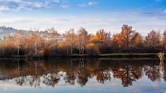 Reflexions sur le boulot (**sandrine**) Tags: trees canon landscape eos arbres paysage reflexions reflets lightroom 2016 nelsandrine