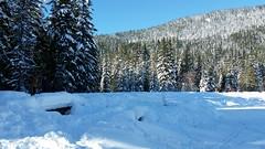 20160101_114056 (mjfmjfmjf) Tags: snow oregon trilliumlake 2016 snoeshoe