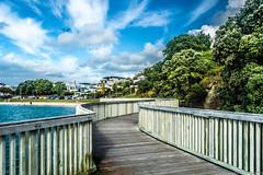 Buckland beach (samir rafsan) Tags: blue newzealand sky tree beach nature water clouds nikon image auckland nz lightroom astounding d3200
