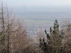 DSC05935 (Randalfino) Tags: sony rando paysage vosges balade randonnée 2015 décembre15