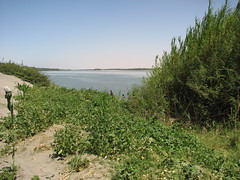 IMG_4218 (motazabdelazeem   ) Tags: sudan rivernile     northernsudan    alkarafab