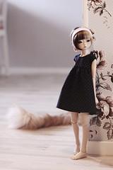 Tigerlou. (icantdance) Tags: dress yumi twiggy midnightblue dollclothes elfdoll tigerlou icantdance