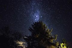 Teatro bajo las estrellas (Yair alexis) Tags: sky luz stars teatro star noche sony sigma os astro cielo astrofotografa constelacin sonya nigth anfiteatro a77 talca universo maule startrail teathre sigma1850 sigmalens sigma1850f28 hsm septimaregion curepto sonyalpha sonyphotos sonystas sonyimages sonya77 sigma18502845 a77v sonyalpha77 sonyalphaa77 sonya77v sony77 sonyalphaa77v sonyalpha77v astrophotograpics sigma18502845oshsm
