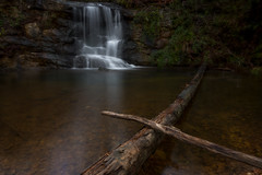 High Falls (CK'sPhoto) Tags: water beautiful forest waterfall nikon stream long exposure tokina d750 hoover tamron birminghamalabama alaba