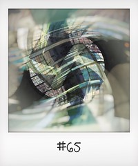 """#DailyPolaroid of 2-12-15 #65 • <a style=""""font-size:0.8em;"""" href=""""http://www.flickr.com/photos/47939785@N05/24133529835/"""" target=""""_blank"""">View on Flickr</a>"""
