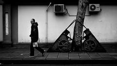 Walking home (weihgoldd) Tags: china street city people urban man tree bag blackwhite shanghai streetphotography sidewalk barrow frenchconcession pushcart