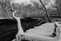 Winter Water (CJ Schmit) Tags: longexposure trees winter blackandwhite bw snow cold ice water monochrome wall wisconsin canon river rocks frost brush milwaukee handheld wauwatosa snowcoveredtrees mke shutterdrag softwater hartpark iso50 menomoneeriver cottoncandywater canonef1740mmf40lusm canon5dmarkiii cjschmit 5dmarkiii wwwcjschmitcom niksilverefex2 cjschmitphotography charleshartpark