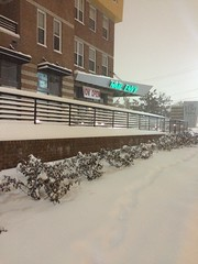 Blizzard of 2016 - Hyattsville, MD (Jeremy-R-Michael) Tags: winter snow storm dc md snowstorm maryland heavy storms blizzard hyattsville snowstorms heavysnow snowzilla snowinmaryland blizzardof2016 snowinhyattsville