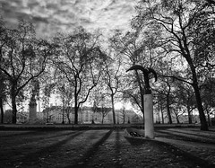 Wings (Wormsmeat) Tags: trees london statue blackwhite wings mod shadows londoneye panasonic whitehall embankment countyhall ministryofdefence dmcgm1