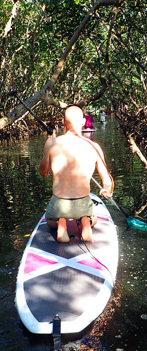 2_01_16 pm Sarasota paddleboard tour Lido Key 04
