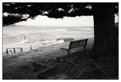 gone fishing  #351 (lynnb's snaps) Tags: ocean film beach landscape coast fisherman tmax3200 kodak sydney j8 longreef iiic 201602