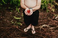 Greg. (Francine de Mattos) Tags: canon cores 50mm contraste santacatarina luznatural francinedemattos fotografeumaideia amoremformadefoto