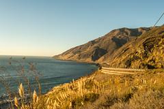 DSC_0288 (ccharlot22) Tags: california bigsur lucia hwy1