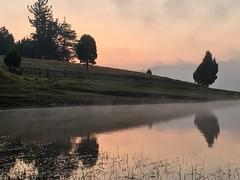 Neblina sobre el agua