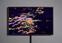 Enter the Machine 1.4 A.K.A. My Dropbox (lightbox on) (Eric Corriel) Tags: art machine installation files data harddrive visualization bits bytes