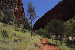 Simpsons Gap, West MacDonnell Ranges (cathm2) Tags: travel walking landscape scenery nt walk australia outback northernterritory simpsonsgap alicesprings redcentre westmacdonnell