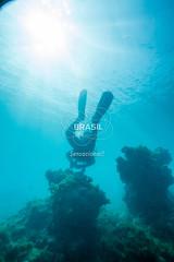 NE_Abrolhos0004 (Visit Brasil) Tags: vertical brasil natureza mergulho bahia esporte nordeste aventura externa abrolhos subaqutica comgente diurna