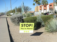 STOP!  You're Home! (elycefeliz) Tags: arizona tucson