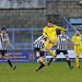 """Dorchester Town 2 v 1 Chesham SPL 30-1-2016-1550 • <a style=""""font-size:0.8em;"""" href=""""http://www.flickr.com/photos/134683636@N07/24726385315/"""" target=""""_blank"""">View on Flickr</a>"""