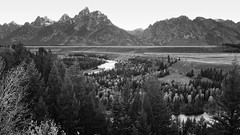 Snake River Overlook (rubberducky_me) Tags: blackandwhite usa mountains america forest river snake northamerica wyoming overlook grandteton jacksonhole grandtetonnationalpark