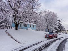 DSC01608-2 (johnjmurphyiii) Tags: winter usa snow connecticut shelly cromwell originaljpeg johnjmurphyiii 06416 sonycybershotdsch90