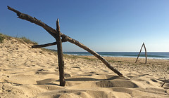 Sculptures (caralan393) Tags: beach sand phone driftwood sculpyure