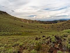 White Mountains Wilderness, Crooked Creek, Spur (darthjenni) Tags: california us unitedstates bishop inyonationalforest monocounty greatbasindesert basinandrangeprovince 36e302