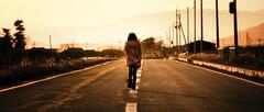 帰り道 (のの♪) Tags: 夕陽 夕景 滋賀 自然光 多賀